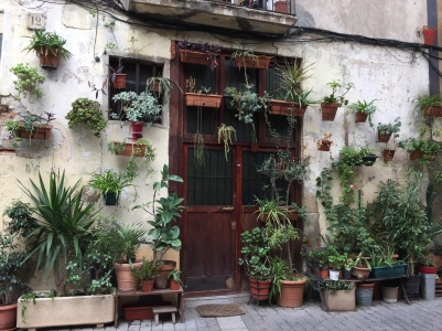doorwithplants