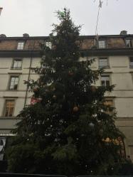 The Genève Christmas tree